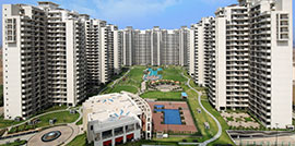 Apartments in Sector 81 Gurgaon